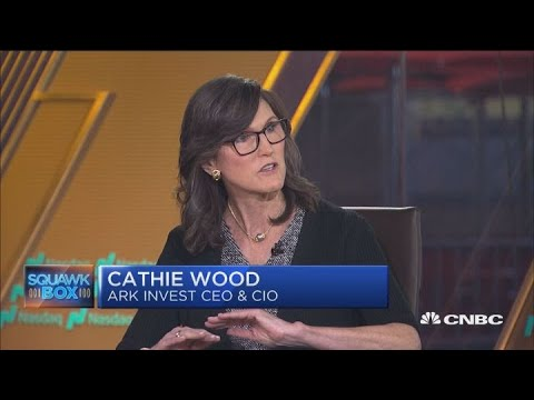 ARK's Cathie Wood made a monster call in 2018 that Tesla stock ...