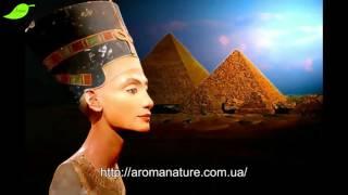 Масло черного тмина. Секреты фараонов.