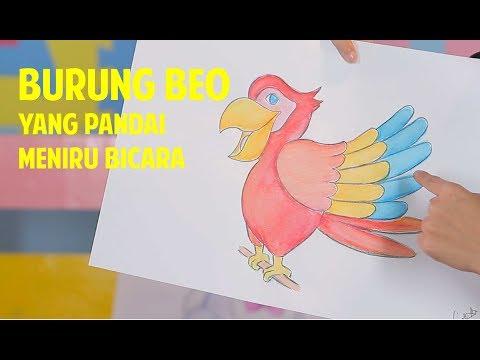 Fun Drawing Burung Beo Yang Pandai Meniru Bicara