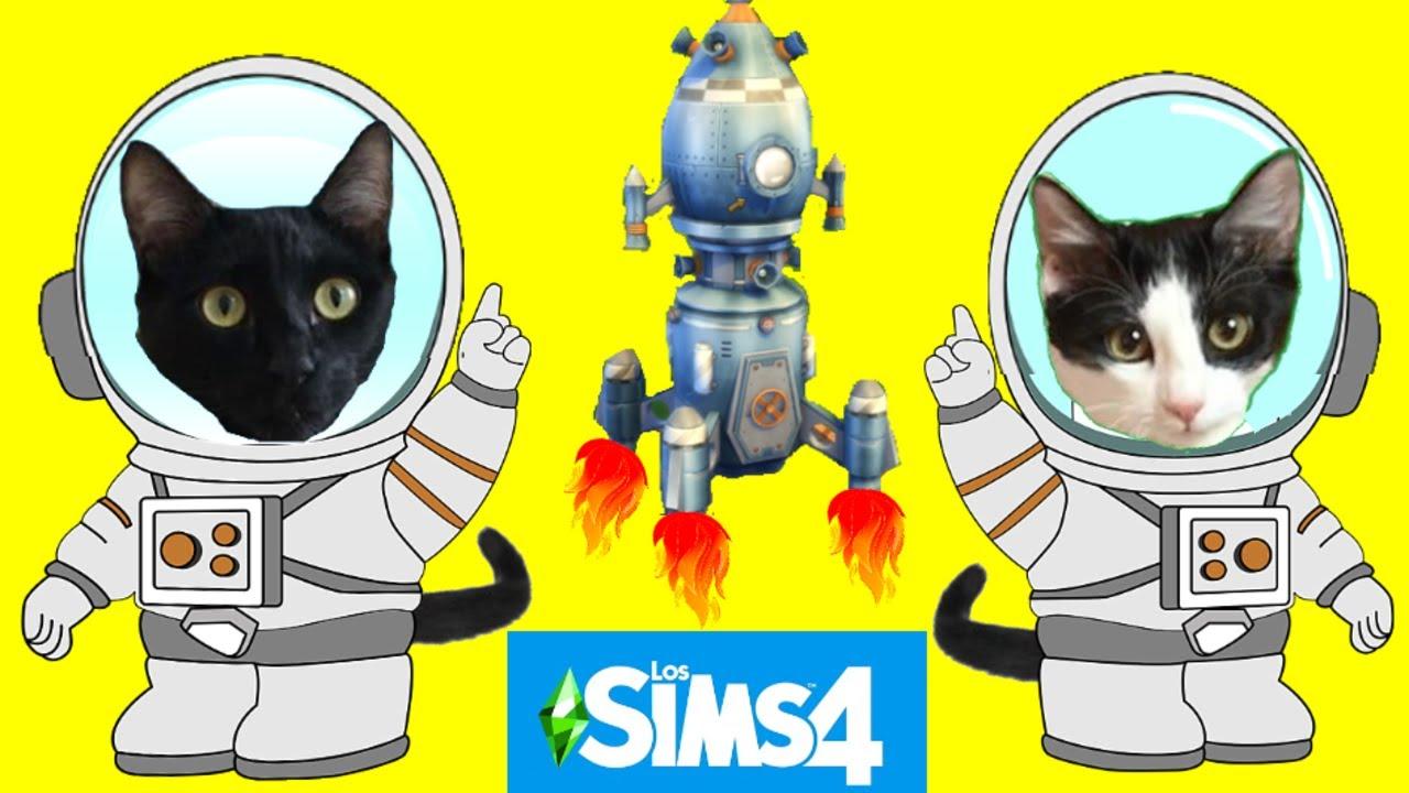 Gatos Luna y Estrella y el desafío del viaje al espacio de Lola en los SIMS 4 / Videos de gatitos