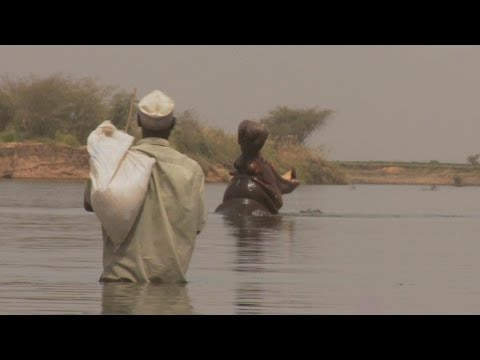 Faces of Africa - Abdou and the Hippos