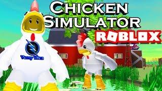 ROBLOX | The Chicken War Ham Eat Sieu Hilarious Forestry | Chicken Simulator | Vamy Tran