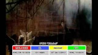 Download D'CIPS - Bidadari Official  Clip HD MP3 song and Music Video