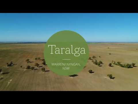 'taralga',-warren-/-nyngan,-nsw