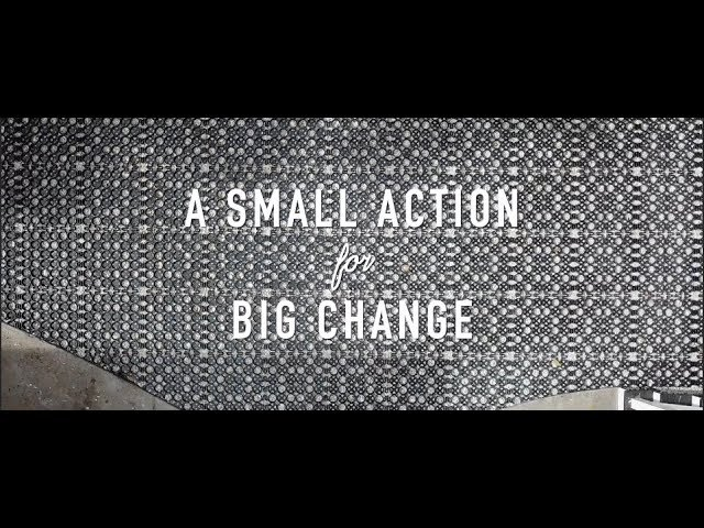 A SMALL ACTION for BIG CHANGE