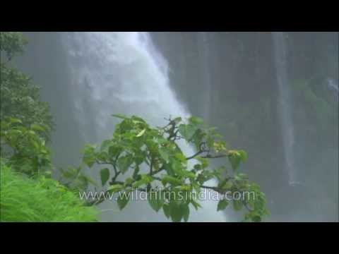 Lingmala waterfalls in Mahabaleshwar