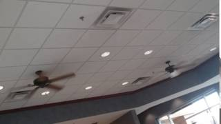 Seagull Lighting Celebrity Deluxe Ceiling Fans at a Rustic Style Culver's