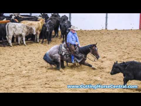 2017 Bonanza Cutting Open Classic Finals Slideshow