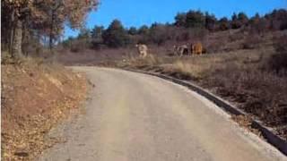 Baixar Lo Pardal Roquer - Sóc de l'oest