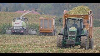 Dwie sieczkarnie vs 600ha - Kompleksowe usługi rolnicze Agri Adamski