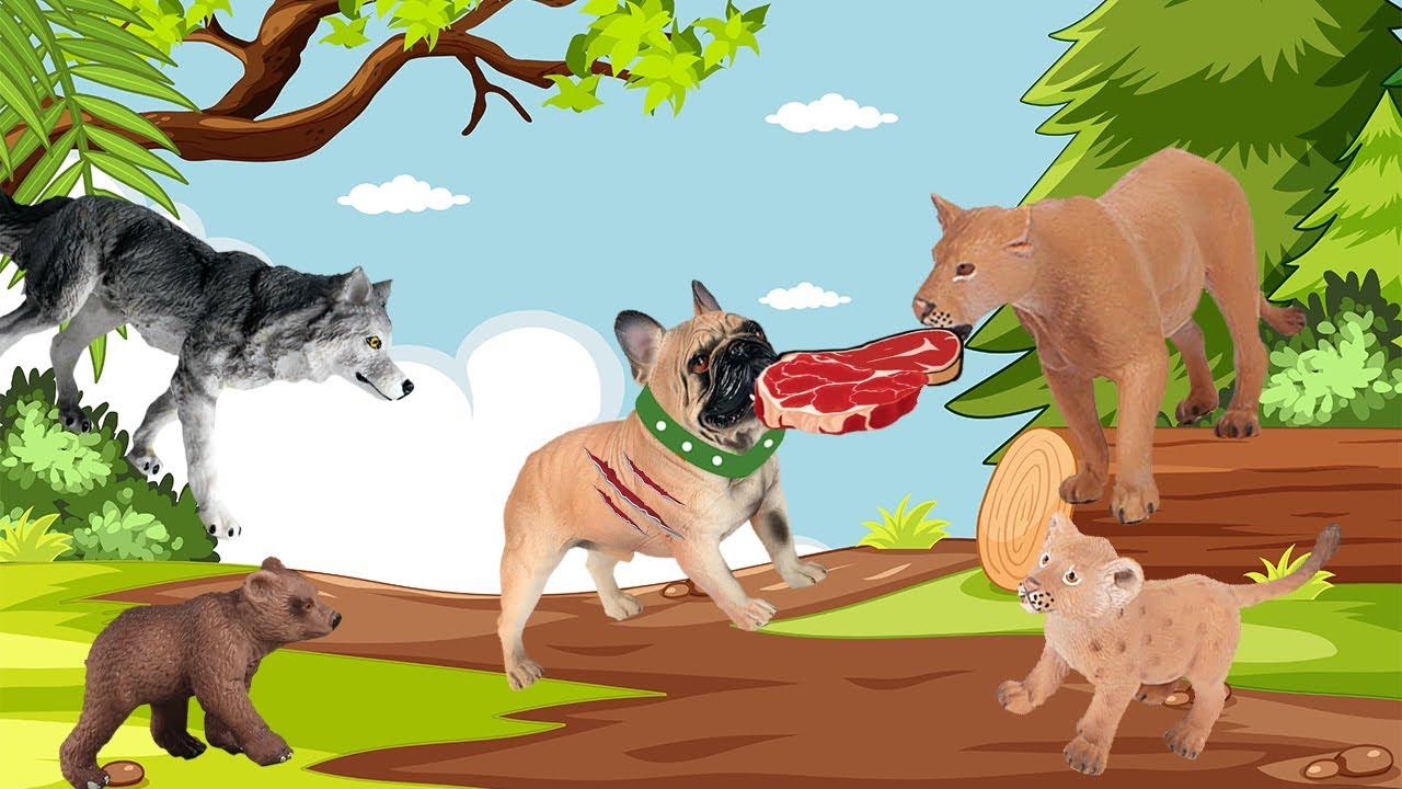 حواديت أطفال | حدوتة الكلب السمين والذئب الحر