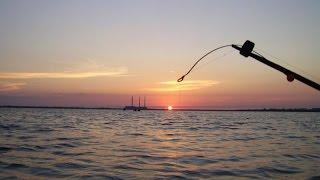 рыбалка на Дону, рыбец