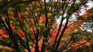 石川さゆりさんのヒット曲です。昨年の紅白でも歌われていました。 素敵...