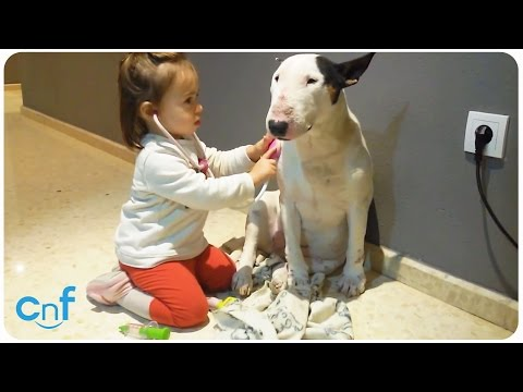 Best Friends | World's Youngest Doggie Doctor