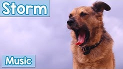Storm Music for Dogs! Distract Your Dog from The Storm with this Calming Music! Reduce Storm Anxiety