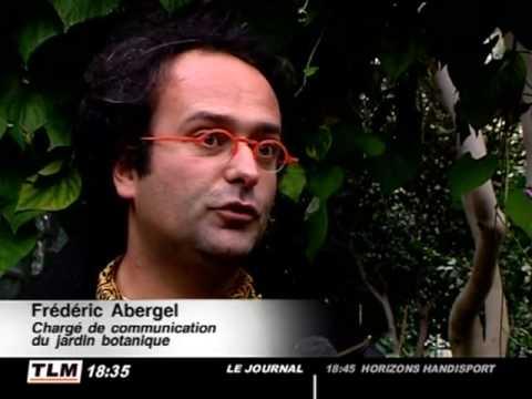 Expo : Chrysanthèmes En Fête ! Au Jardin Botanique De Lyon