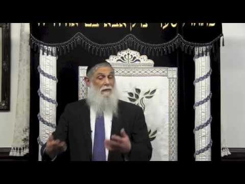 Rabbi Avraham Sutton at Congregation Yisodei Chaim - Spiritual Technology - The Meaning of Moadim