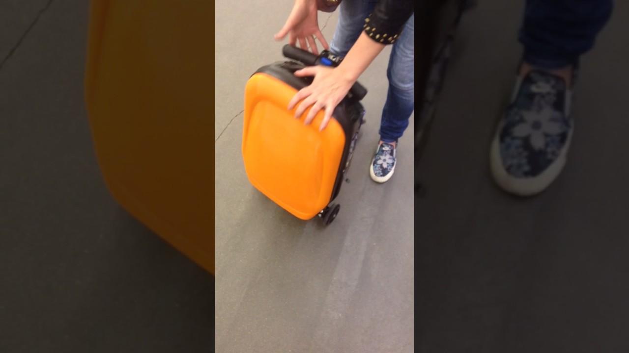 Купить бренд trunki дети детский чемодан транки ребенок интернет магазин доставка киев украина колеса цена недорого заказать выбрать выгодно.