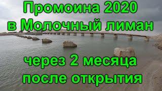 Промоина с Азовского моря в Молочный лиман через 2 месяца после открытия