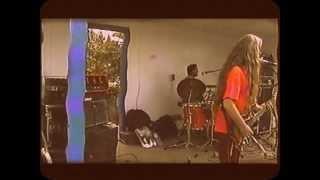 The Vinyl Junkies - Up On Cripple Creek