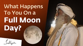 What Happens To You On a Full Moon Day?