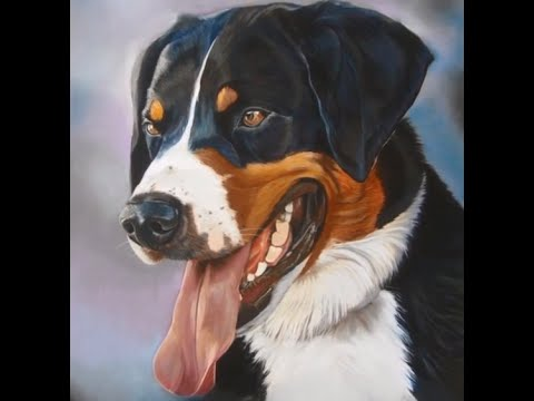 peindre une langue de chien au pastel sec avec l 39 artiste. Black Bedroom Furniture Sets. Home Design Ideas