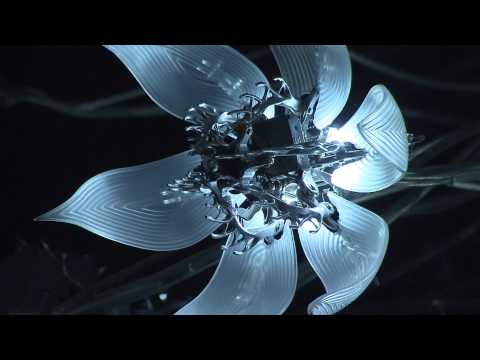 Engineering Art | ArtQuest | NPT