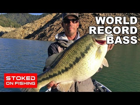 World Record Bass