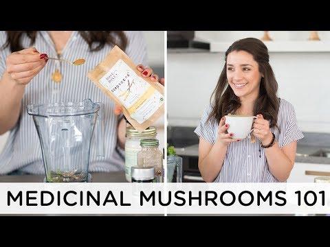 BENEFITS OF MEDICINAL MUSHROOMS ��+ my top 4 favorites