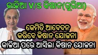 Kishan yojana Narendra Modi New Scheme || କାଳିଆ ପରେ ଆସିଲା କିଷାନ ଯୋଜନା