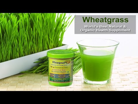 Wheat Grass Powder a Complete Natural and Organic Health Supplement