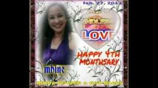 Gambar cover ENDLESS LOVE