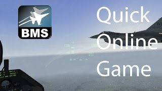 falcon bms 4 33 u1 quick online game