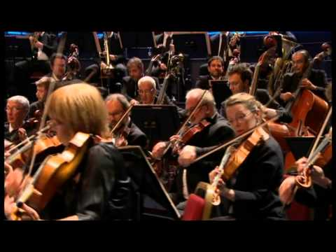 Saint-Saëns - Symphony No 3 in C minor, Op 78 - Järvi
