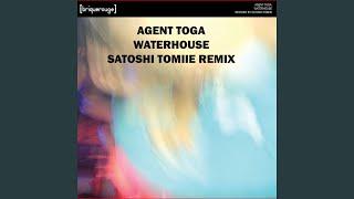 Waterhouse (Satoshi Tomiie Remix)