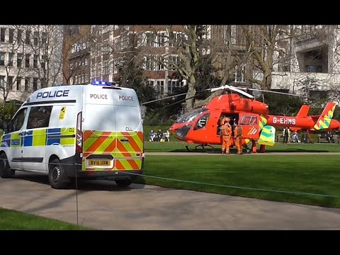 Emergency Services attend to person in the River Thames