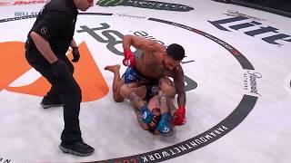 Bellator 208: Henry Corrales - TKO Finish