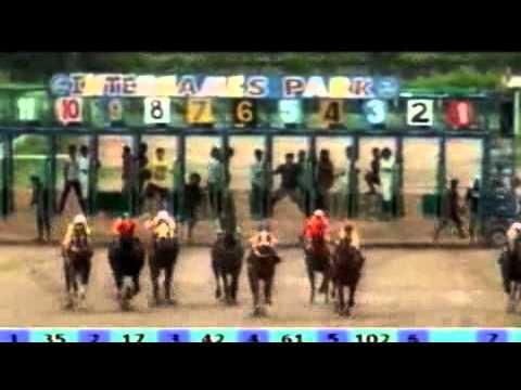 ม้าแข่งอุดรเที่ยวที่1 ชั้น10  26 พ.ค.55