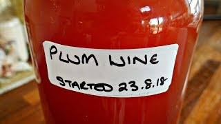 Plum Wine. How I Make Plum Wine And Other Country Wines