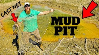 Cast-Netting GIANT Mud Pit Monsters (BIG Fish Rescue!!)