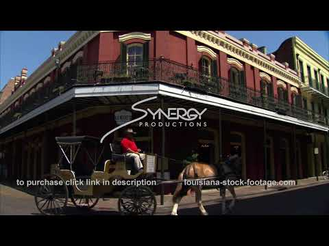 219 Horse Drawn Carriage French Quarter New Orleans Louisiana Video Stock Footage