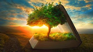 28 Day Change Your Thoughts Manifest New Reality Guided Sleep Meditation