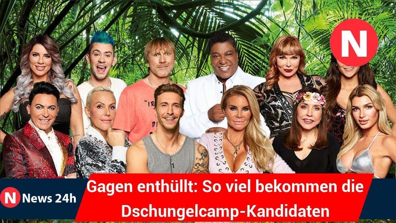 Dschungelcamp Gagen