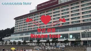 쿤쿤투어 부산1편 #부산 #해운대 #조선 호텔 #뷔페