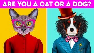 Is Your Personality More Like A Cat Or A Dog