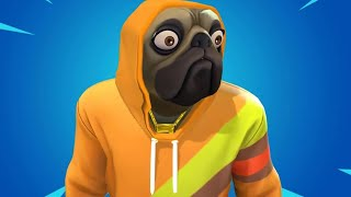 *NEW* DOGGO SKIN IN FORTNITE!