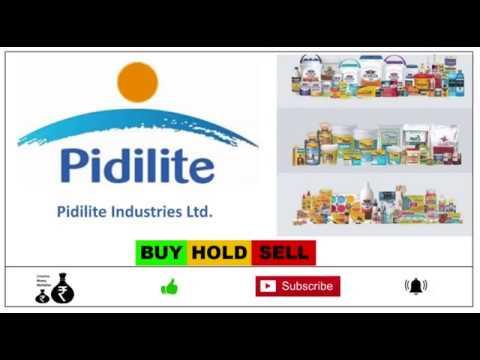 Pidilite Industries Ltd Youtube