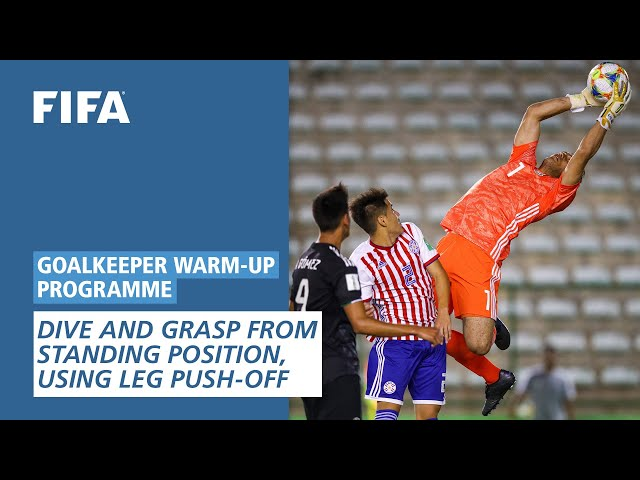 Dive and grasp from standing position, using leg push-off  [Goalkeeper Warm-Up Programme]
