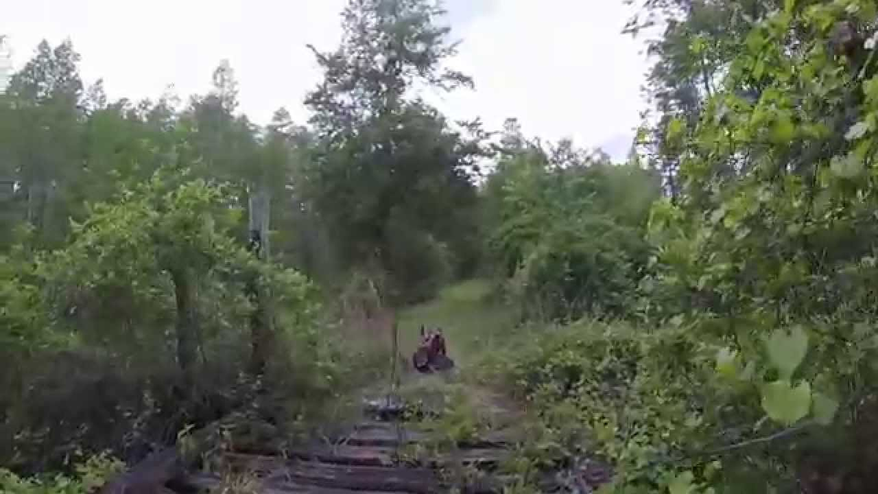 Old Railroad Trestle in Goethe State Forest - YouTube