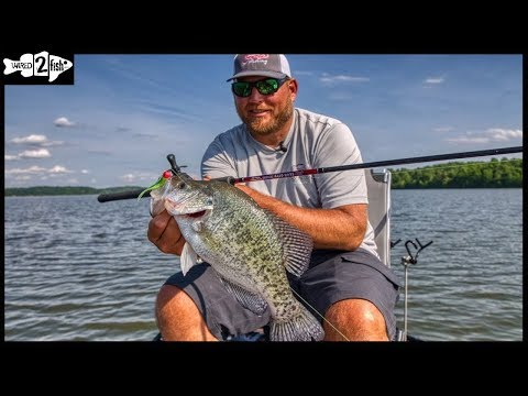 Crappie Fishing Late Spring Early Summer Transition